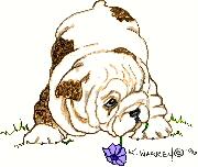 logobulldog.jpg